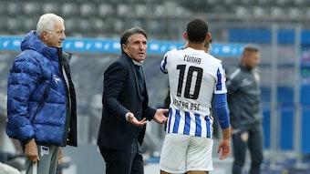 Trainer Bruno Labbadia nimmt Matheus Cunha bei Hertha in die Pflicht.