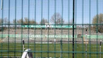 BSG Chemie Leipzig will kein Geld von RB Leipzig.