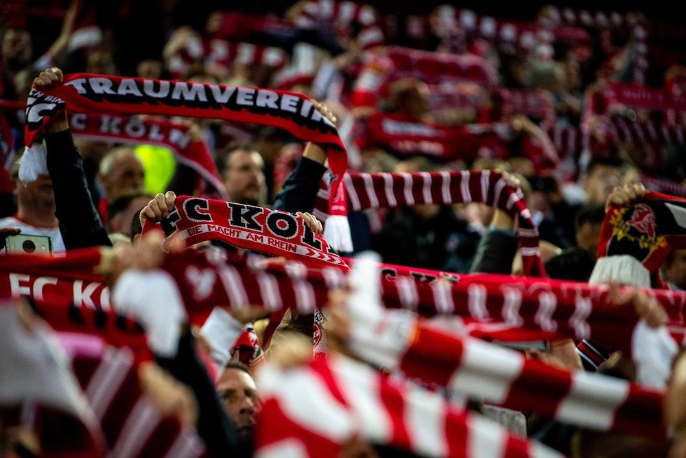 Fans des 1. FC Köln stehen auf der Tribüne