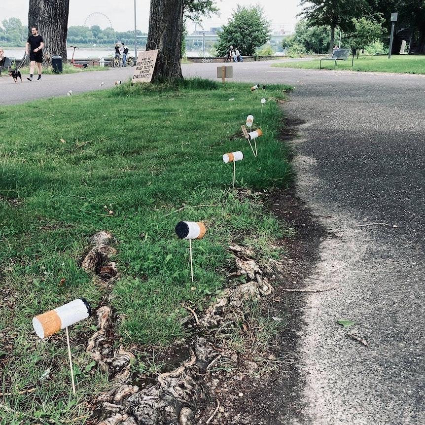 Überdimensionale Zigarettenkippen sind an einem Weg im Kölner Rheinpark angebracht.