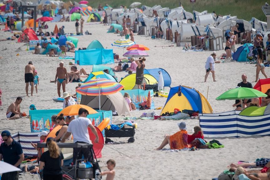 Am Ostseebad in Zingst haben Urlauber am Strand Sonnenschirme aufgespannt.
