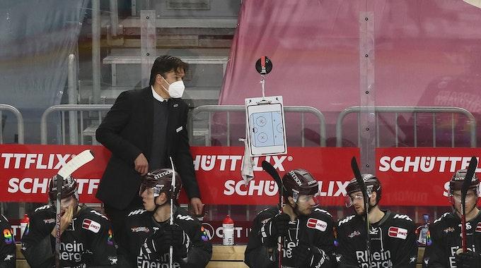 Uwe Krupp beobachtet ein DEL-Spiel der Kölner Haie am Spielfeldrand hinter seinen Ersatzspielern.