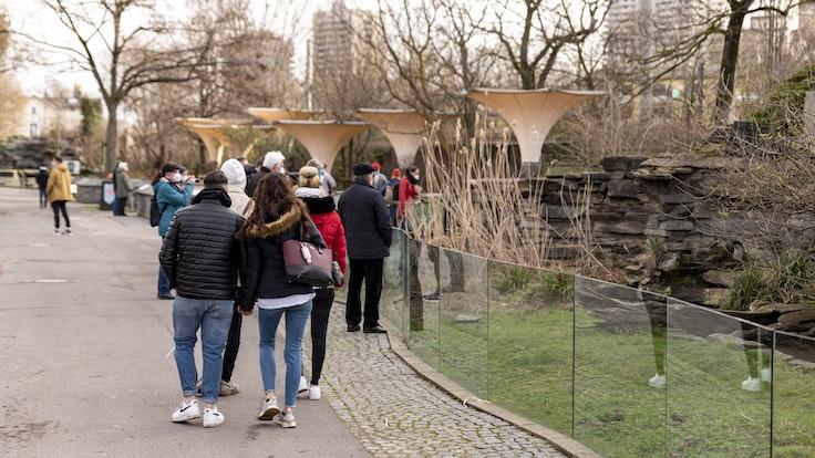 Menschen spazieren durch den Kölner Zoo.