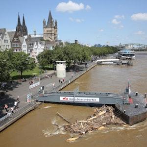 Hochwasser in Köln: Das Rheinufer bei einem Wasserstand von 7,42 Meter.