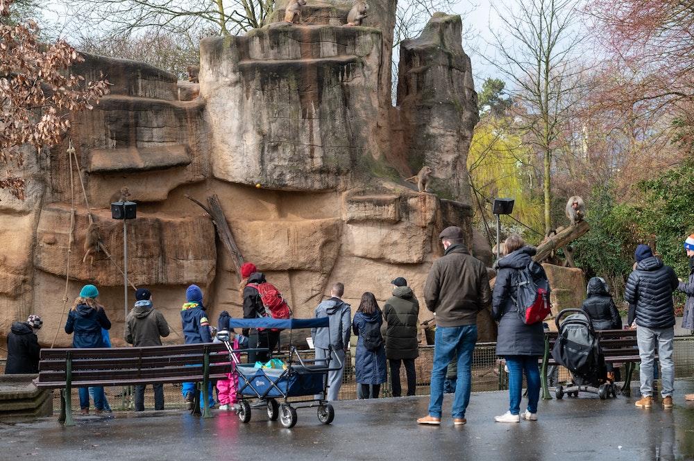Menschen vor einem Gehege im Kölner Zoo.