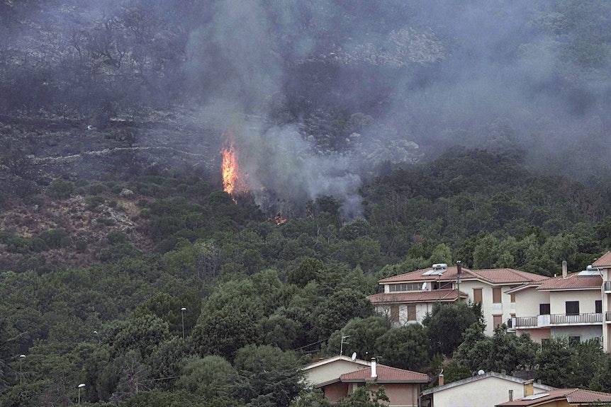Flammen schlagen am 26.07.2021 aus einem bewaldeten Gebiet in der Nähe von Häusern in der Nähe von Oristano auf der Insel Sardinien.