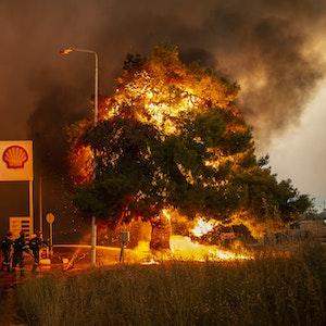 Feuerwehrleute bekämpfen einen Waldbrand in einem Waldgebiet nördlich von Athen, welches sich einer Tankstelle nähert.