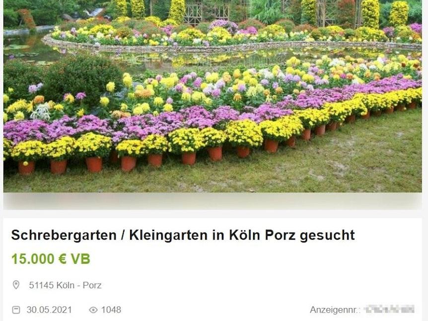 Eine Anzeige eines Interessen für einen Kleingarten in Köln.