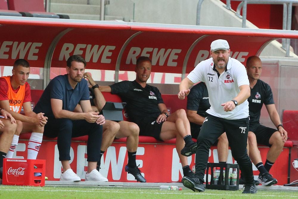 Steffen Baumgart brüllt den 1. FC Köln gegen Hertha BSC nach vorne.