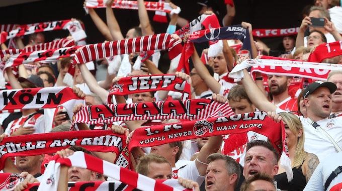Fans des 1. FC Köln stehen im Rhein-Energie-Stadion.