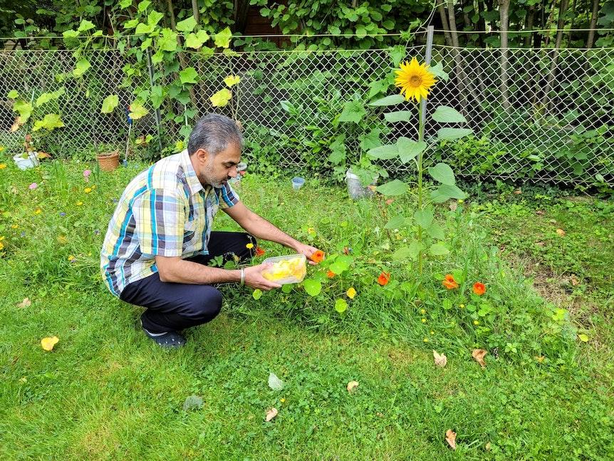 Jaspreet Dhaliwal-Wilmes hockt in seinem Garten und pflückt Blumen.