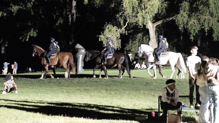 Polizisten auf Pferden reiten über die Grünfläche am Aachener Weiher.