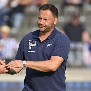 Pal Dardai nach dem Spiel von Hertha BSC gegen den VfL Wolfsburg.