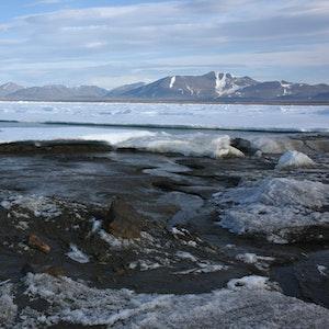 Das kleine noch unbenannte Eiland am nördlichsten Zipfel Grönlands ist möglicherweise die wohl nördlichste Insel der Welt. Entdeckt wurde sie von Forschern der Universität Kopenhagen. Doch die etwa 30 mal 60 Meter großen Insel hat womöglich nicht lange Bestand.