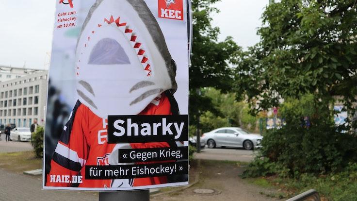 Sharky wirbt für den Start der Eishockey-Saison in Köln.