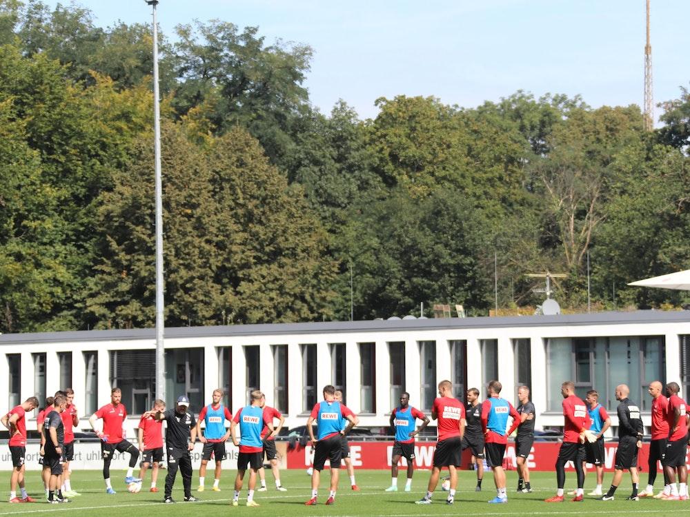 Trainer Steffen Baumgart (1. FC Köln) gibt Anweisungen beim Training des 1. FC Köln.