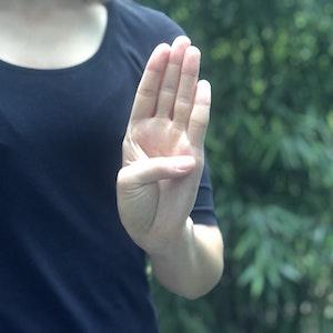 Die kanadische Stiftung für Frauen (Canadian Women's Foundation) hat diese Handbewegung initiiert, mithilfe derer Opfer häuslicher Gewalt in Videocalls ganz still zeigen können, dass sie Hilfe benötigen.