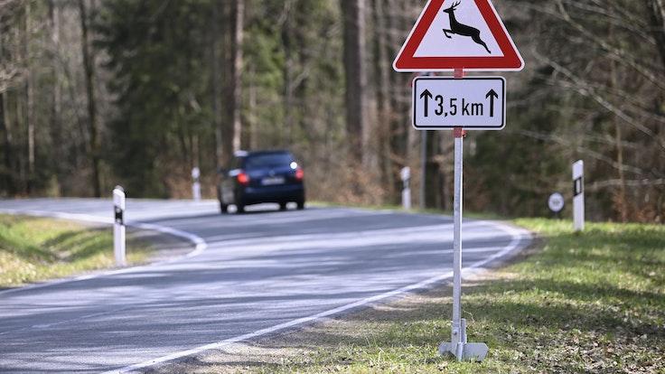 Das Symbolfoto vom September 2021 zeigt eine Straße, an der ein Verkehrsschild auf Wildwechsel hinweist.