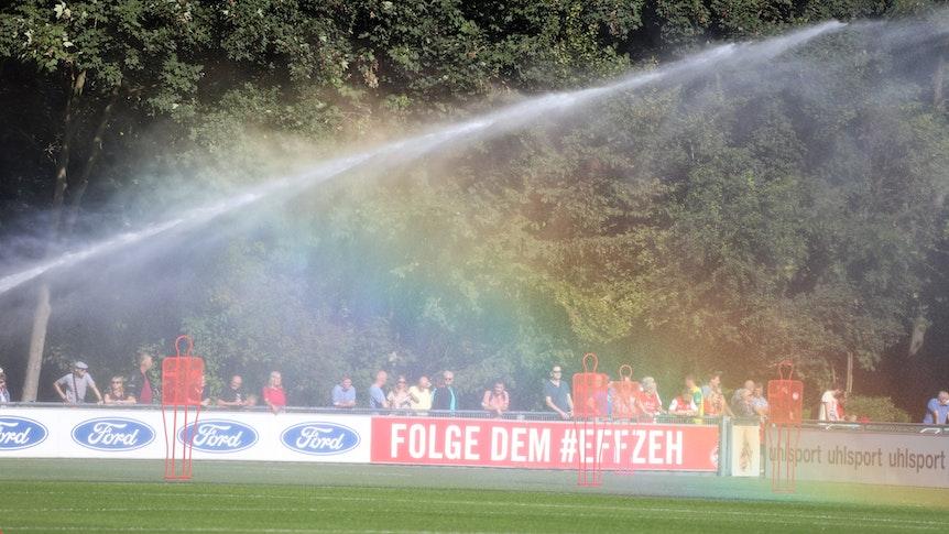 Fans beobachten das Training des 1. FC Köln.