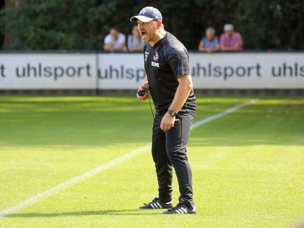 Steffen Baumgart schreit seine Spieler beim Training nach vorne.