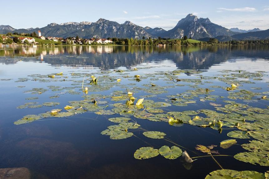 Blick auf die Bergkulisse am Hopfensee in Bayern.