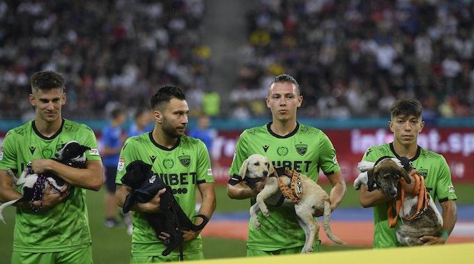 Spieler von Dinamo Bukarest halten Straßenhunde auf dem Arm.