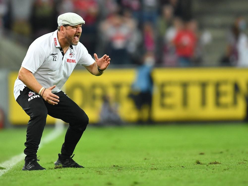 Kölns Trainer Steffen Baumgart gibt Anweisungen.