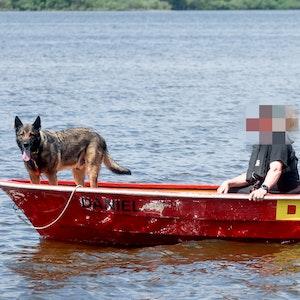 Spürhund Thor sucht mit Einsatzkräften auf dem Einfelder See nach einer minderjährigen Schwimmerin, die hier seit dem 18.Juni 2021 vermisst wird.