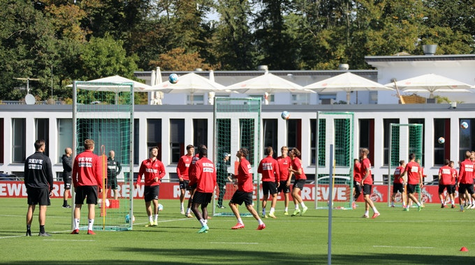Der 1. FC Köln trainiert am Geißbockheim.