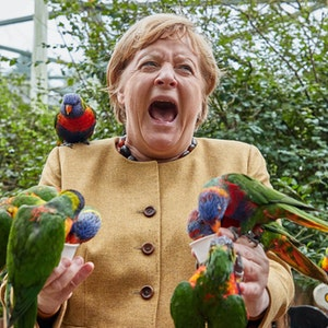 Angela Merkel (CDU), Bundeskanzlerin, füttert australische Loris im Vogelpark Marlow und wird dabei gebissen. +++ dpa-Bildfunk +++