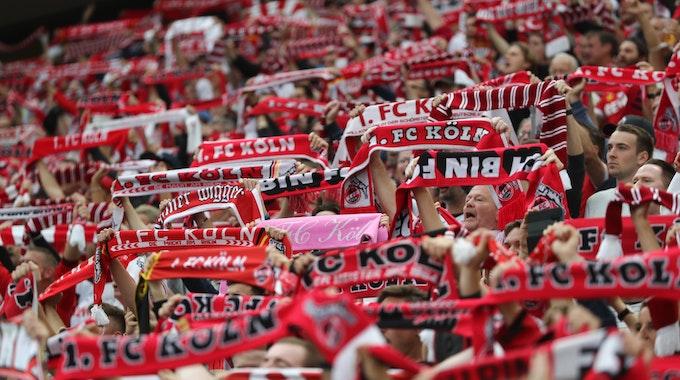 Fans des 1. FC Köln halten beim Spiel gegen Bochum die Schals hoch.