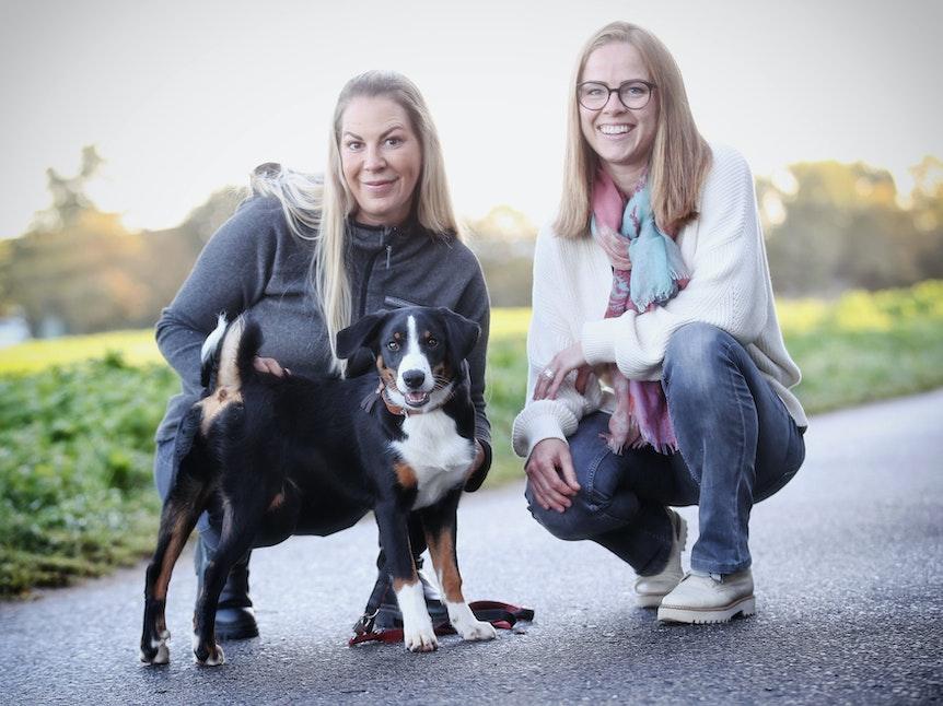 "Hunde-Hort in Lank-Latum ""Bellomania"" Robert-Bosch Strasse / Lank Latum"