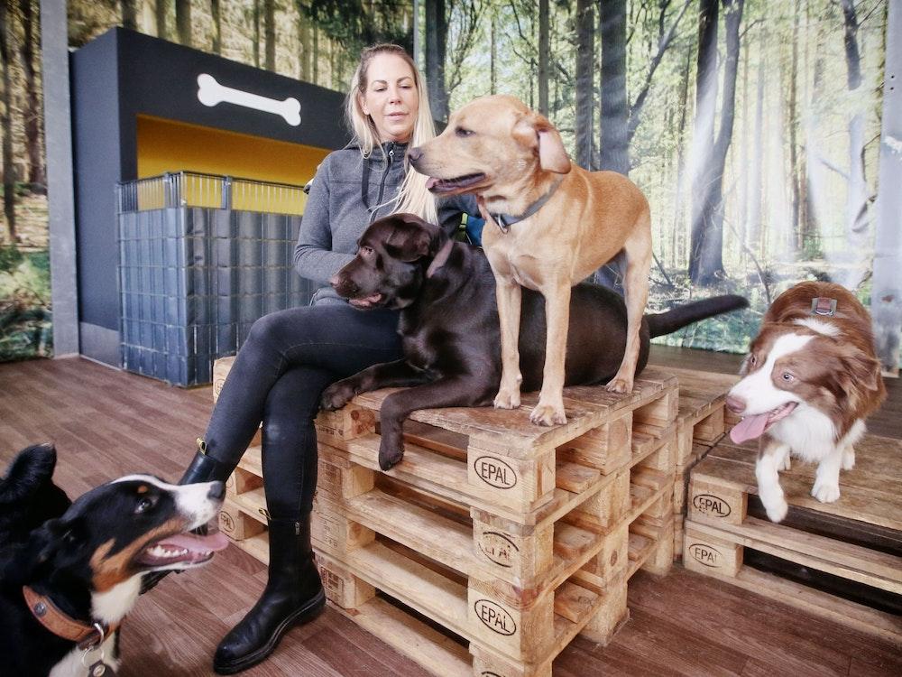 Hundetrainerin Linda Manteuffel sitzt auf einer Holzpalette, um sie herum sind Hunde.