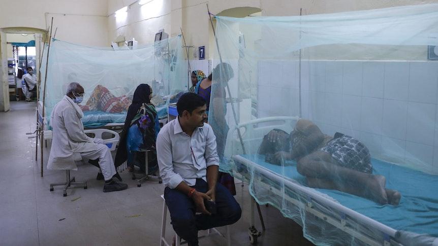 Die mit dem vom Mücken übertragenen Dengue-Fieber erkrankten Patienten liegen, von Mosquito-Netzen umhüllt, im Krankenhaus. Ärzte und Angehörige kümmern sich um die leidenden Menschen, können aber nicht viel ausrichten.