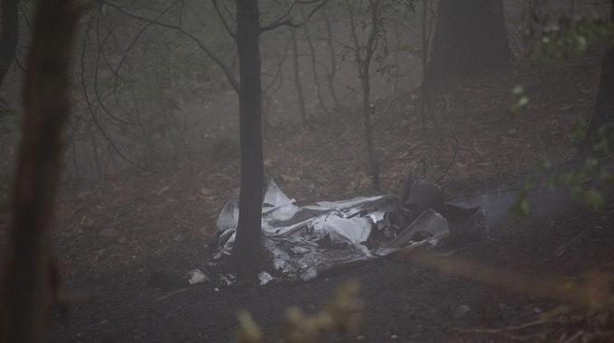 Wrackteile des Flugzeugs liegen im Wald.