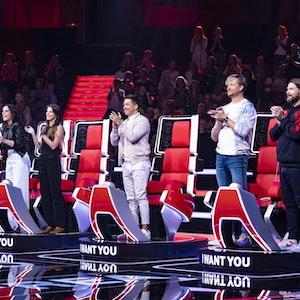 The voice Jury