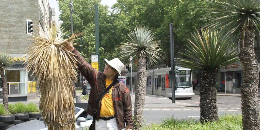 """Diplom-Biologe Volker H. Richter zeigt eine bereits abgestorbene Yucca-Pflanze: """"Düsseldorf ist nicht Mexiko!"""""""
