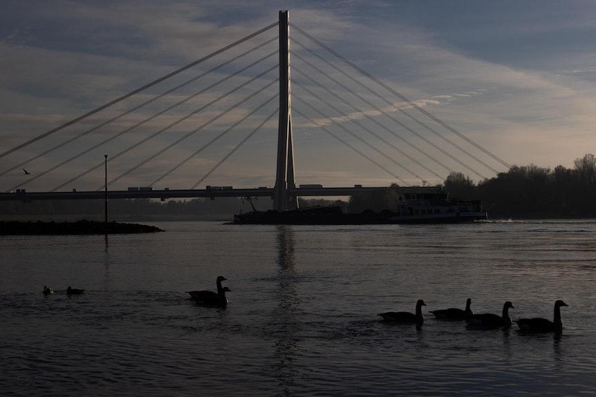 Fleher Brücke3_181120