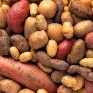 Müssen nicht langweilig sein: Kartoffeln gibt es in einer großen Vielfalt.