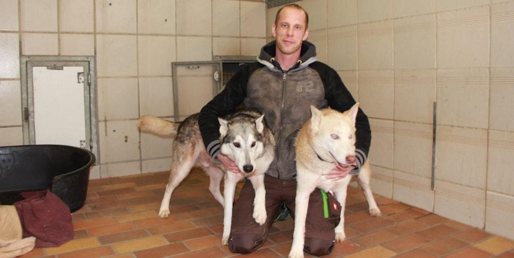 Der Auszubildende Ben van Melkebeke mit zwei der zehn Husky-Mischlinge, die vorige Woche im Tierheim eingeliefert wurden.