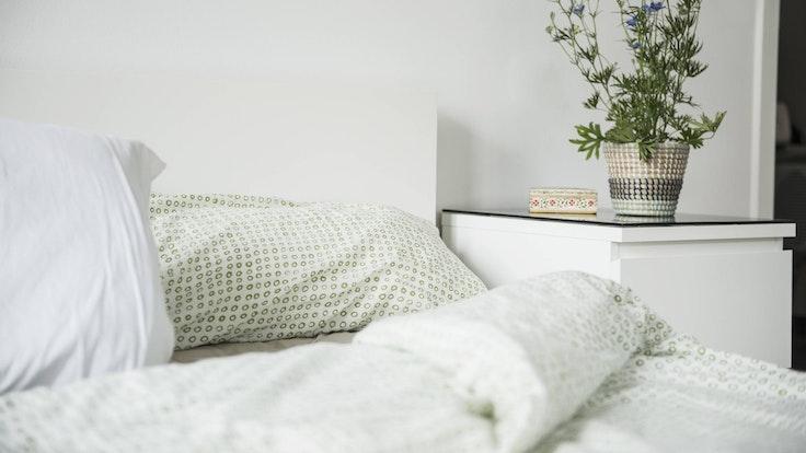 Zimmerpflanzen_schaffen_eine_gute_Schlafatmospäre