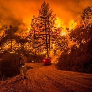 Ein typisches Bild aus Kalifornien: Wälder stehen in Flammen, die Feuerwehr ist im Dauereinsatz.