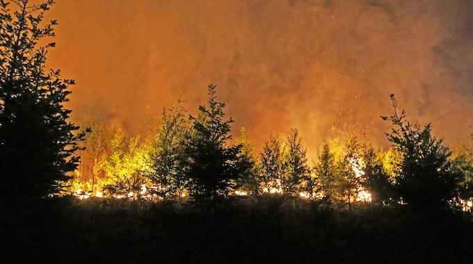 Waldbrand01