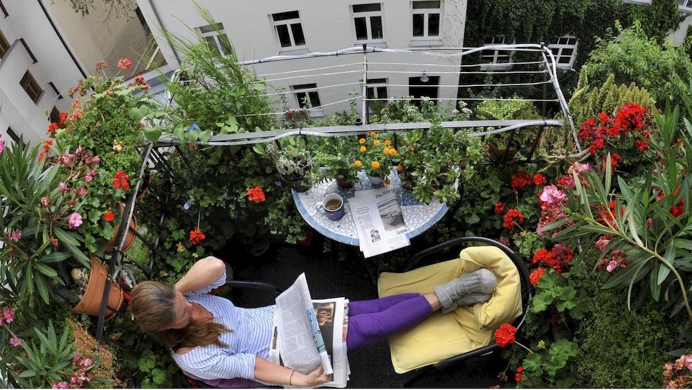 Eine Frau sitzt auf einem Balkon umgeben von Pflanzen. Welche Pflanzen sind eigentlich auf dem Balkon erlaubt.