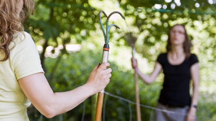 Streit am Gartenzaun ist Alltag in Deutschland: Oft sind die Fronten zwischen Nachbarn verhärtet. (Symbolfoto)