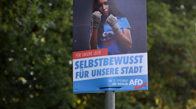 AfD_Wahlplakat-NRW_Freudenberg